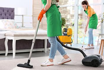 carpet clean The Clean Life